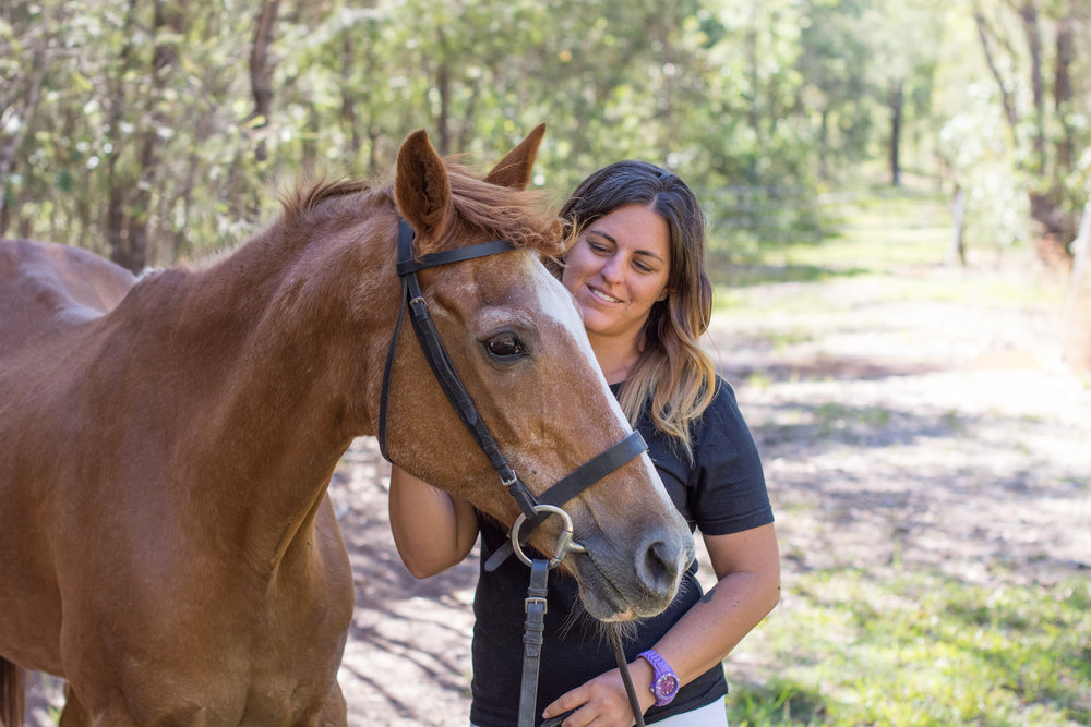 rapport with your horse