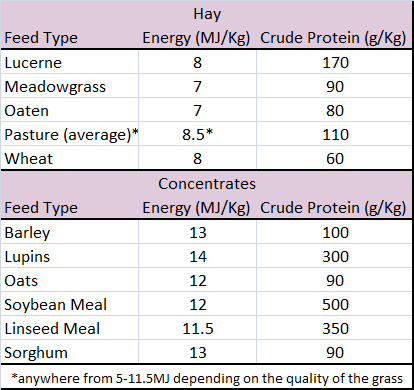 average energy and protein from common feed souces