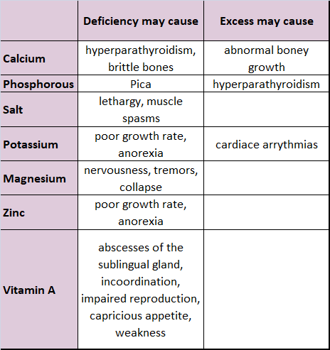 Nutritional Excess and Deficiencies in Horses