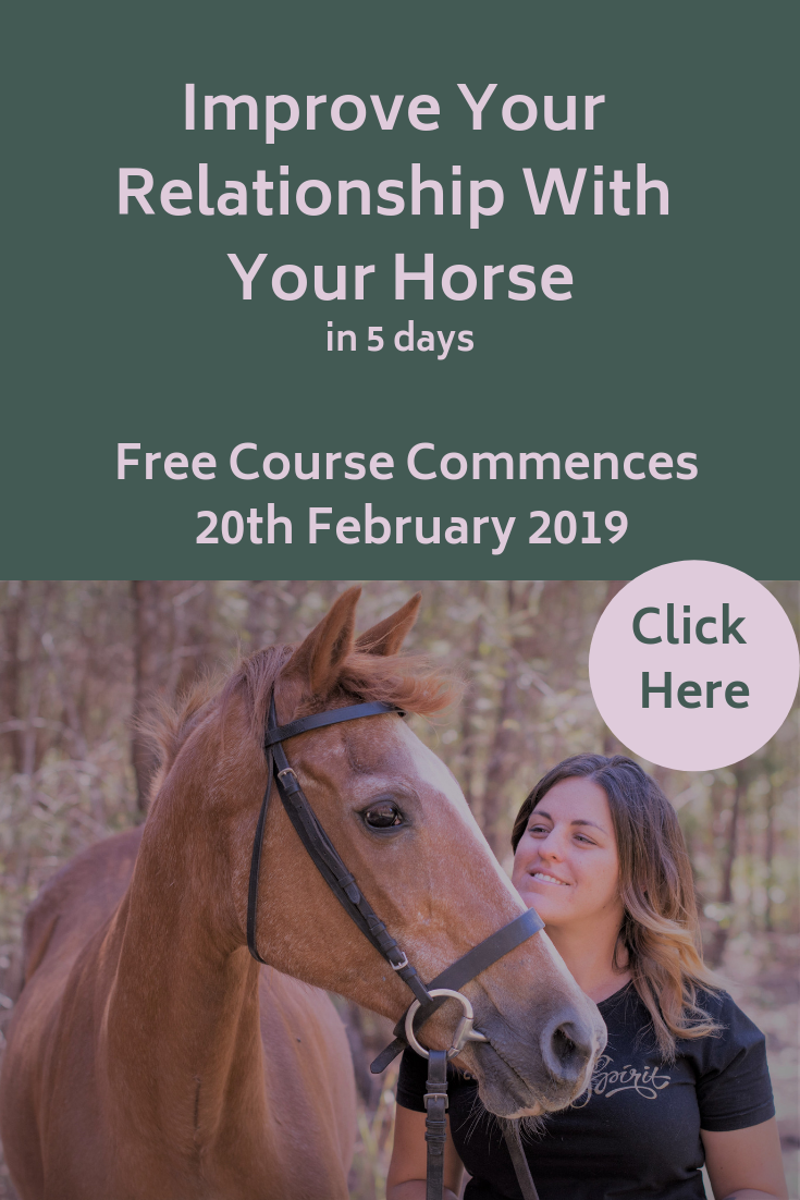 Improve You Bond WIth Your Horse in 5 days