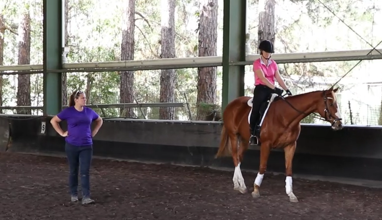Using video from our workshops helps to demonstrate the application of training trainability in REAL horses with REAL riders