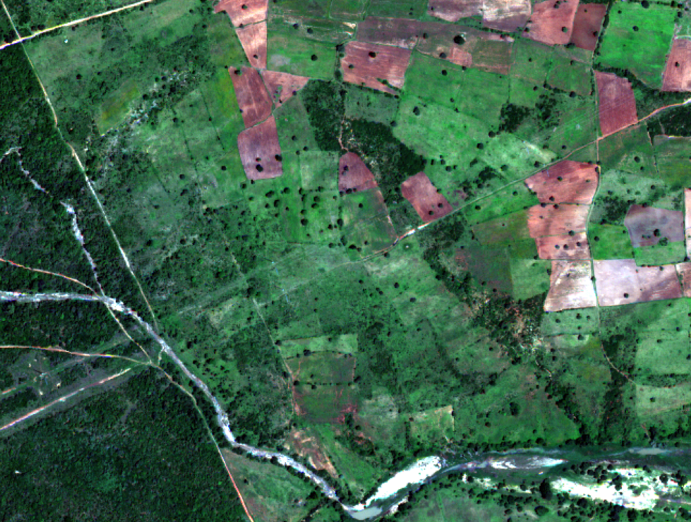 Remote sensing of smallholder farming systems -
