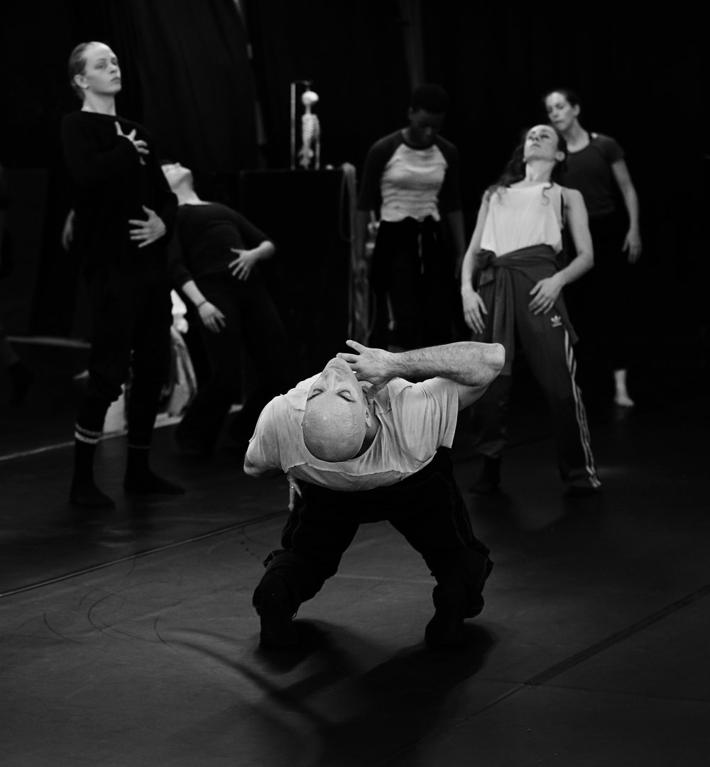 Appvd for ed projects & audition notice - Photo by Dana Fouras.jpg