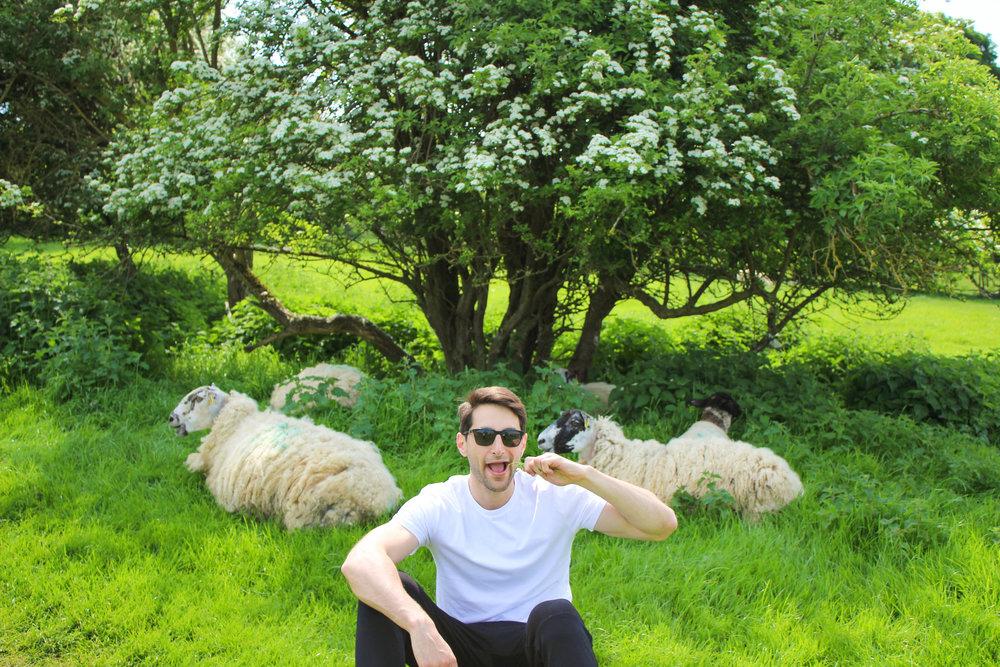 Nate Sheep.jpg