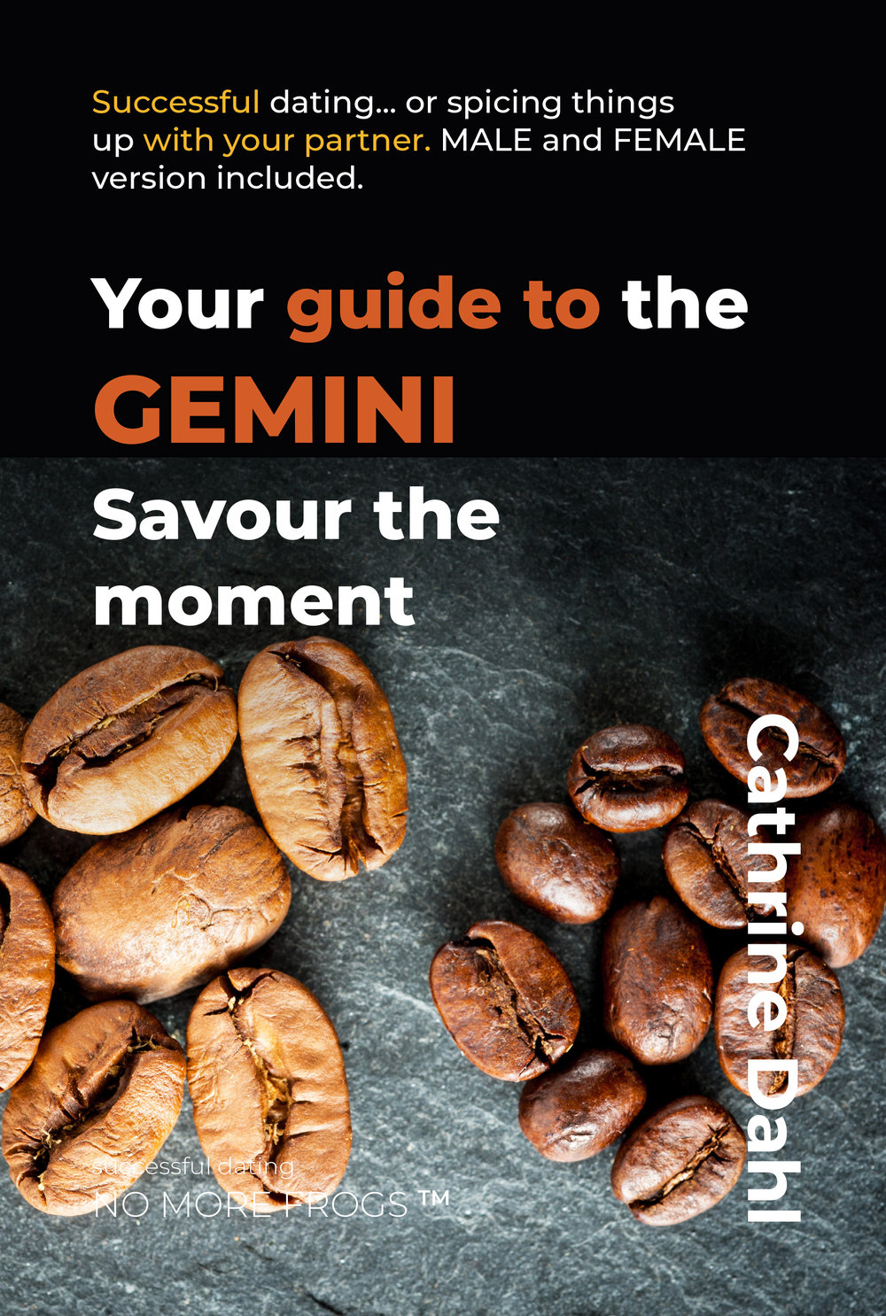03_gemini_ebook_cover_190126.jpg