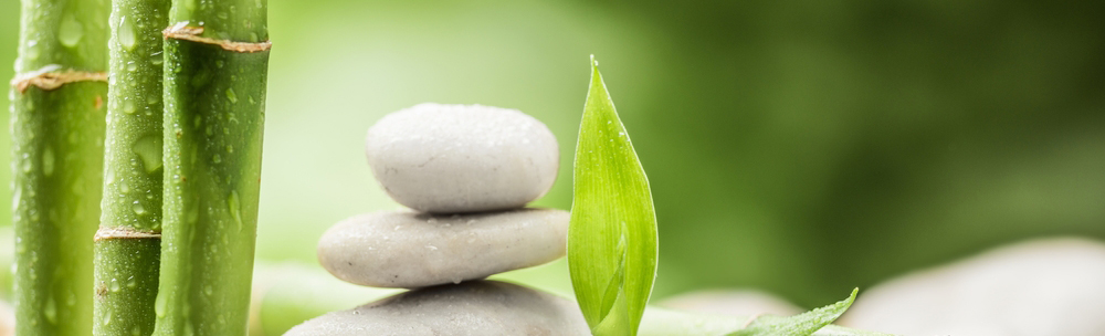 center-acupuncture-nyc-acupuncturists-9