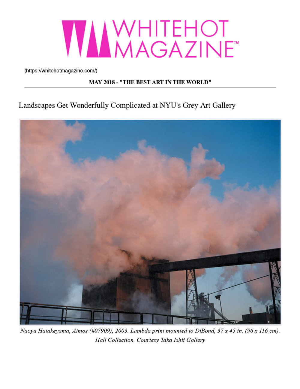 WM-_-whitehot-magazine-of-contemporary-...-Complicated-at-NYU's-Grey-Art-Gallery-1.jpg