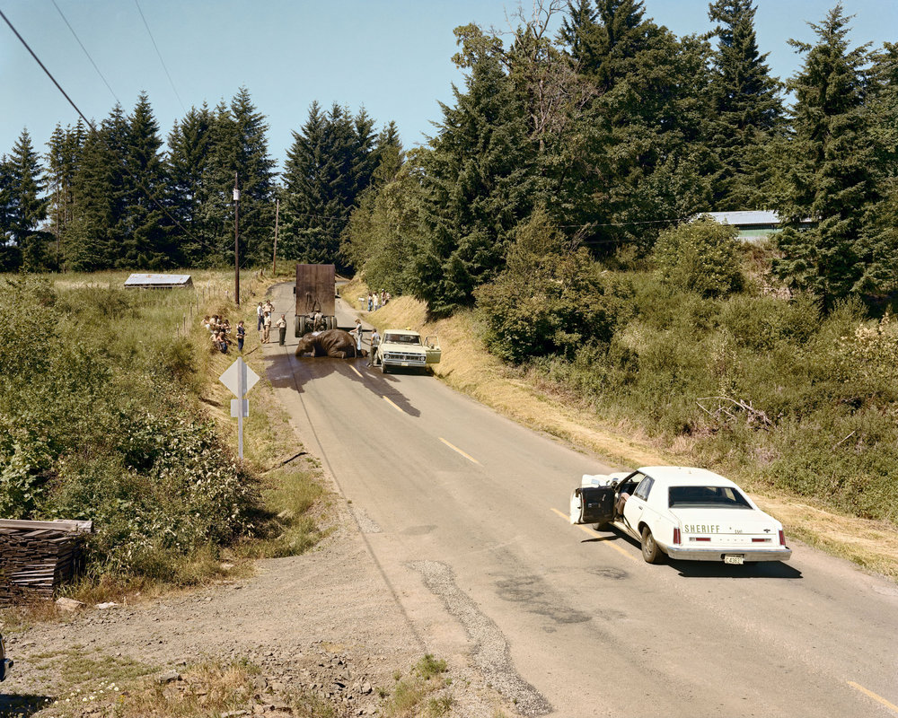 Exhausted Renegade Elephant, Woodland, Washington, June 1979