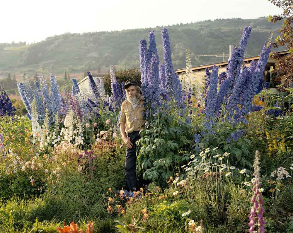 A Blind Man in His Garden, Homer, Alaska, June 1984