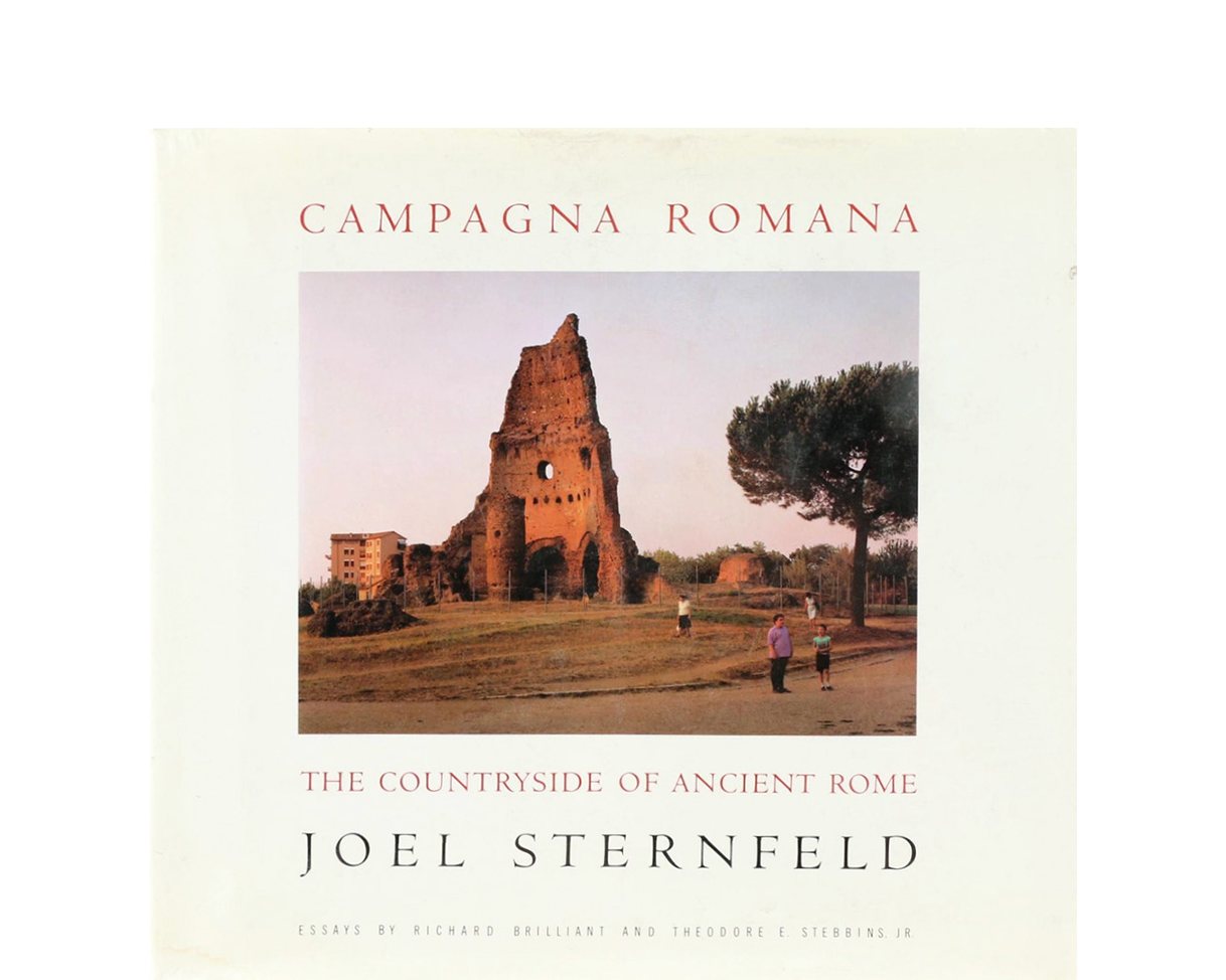 Campagna Romana The Countryside Of Ancient Rome  Joel Sternfeld Campagna Romana The Countryside Of Ancient Rome Powerpoint Help also English Model Essays  Business Essay Examples