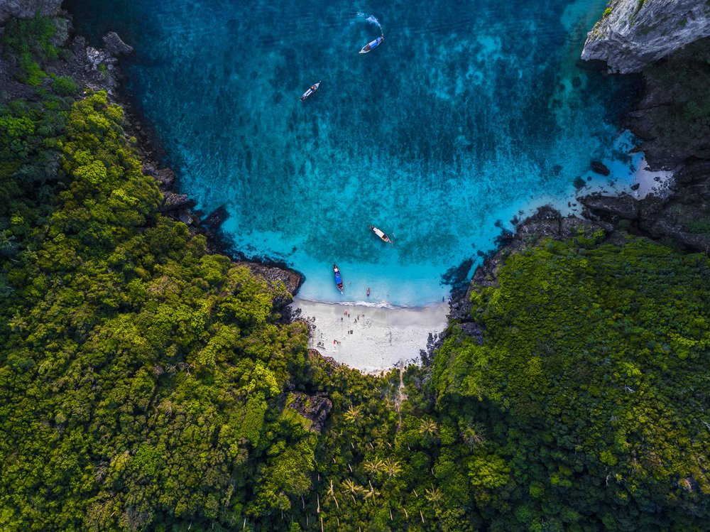 The Jungle Beach_low.jpg