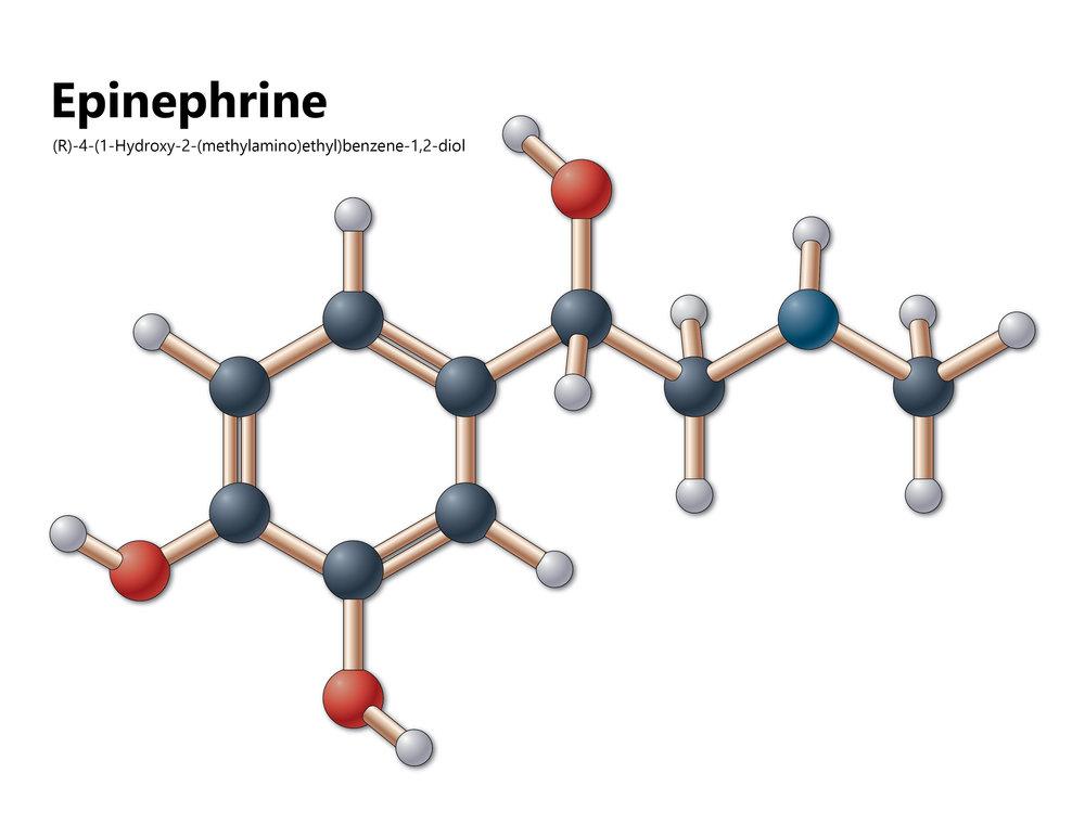 epinephrinev8.jpg