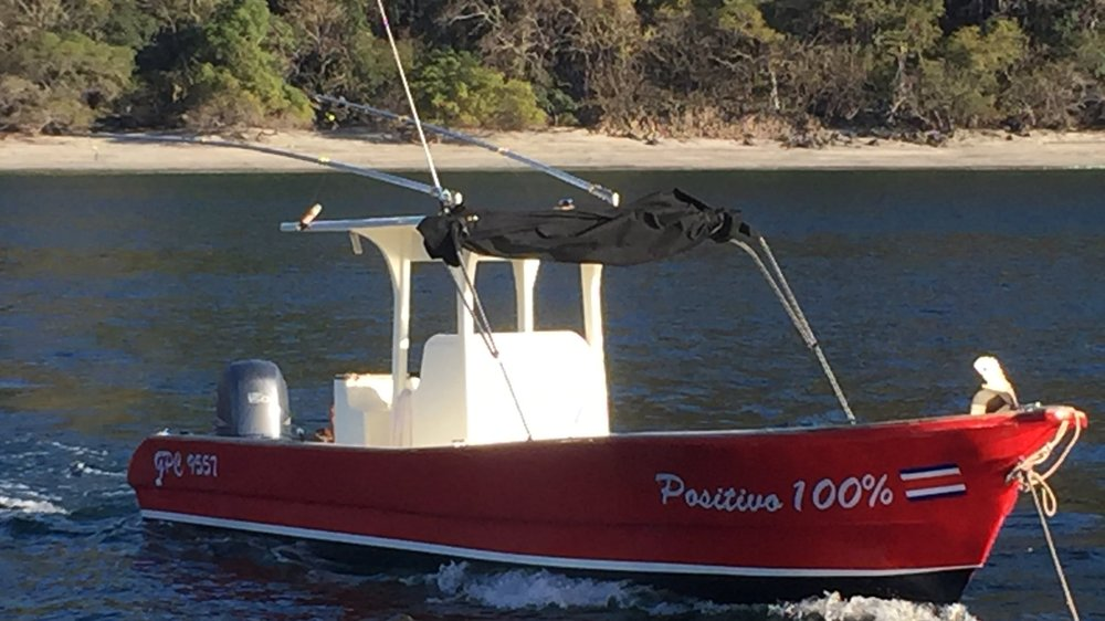 Sport Fishing - Positivo 100%
