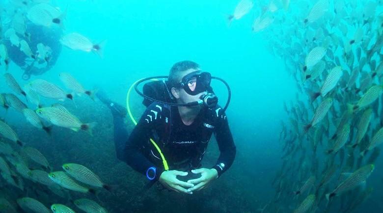 Diving Courses & Tours