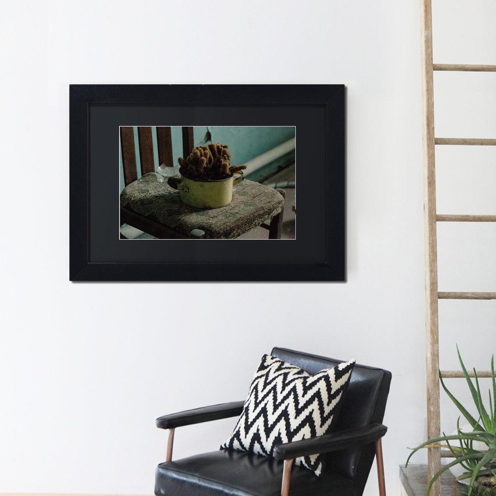 cactus on wall.jpg