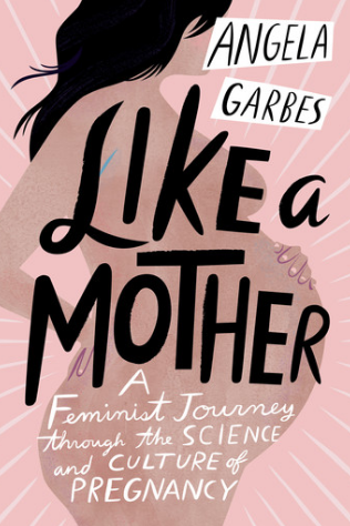 Like a Mother - Angela Garbes, a first time mom, embarks on a journey to answer the FAQs of other first time mom