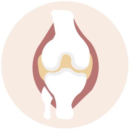 Rheumatology.jpg