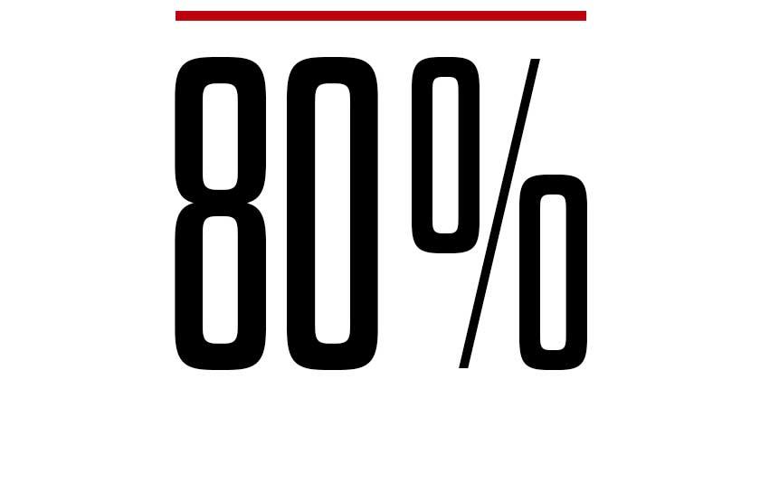 80%-2.jpg
