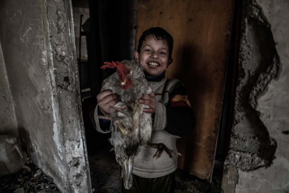 - Mustafa 9 years old, the grandson of Um Mohammed holds a chicken.
