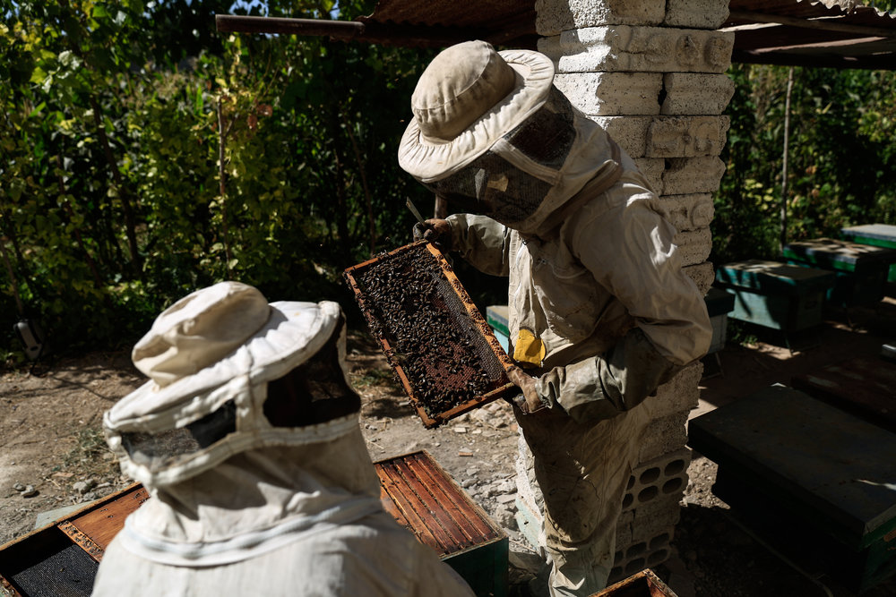 - Beekeepers work on hives at a bee farm in the town of Hamouria, in the eastern Ghouta region on the outskirts of the capital Damascus.
