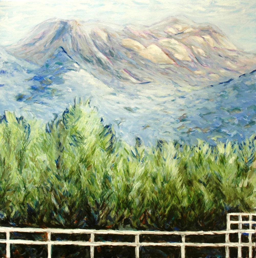 WHITE FENCE - MT. BUFFALO