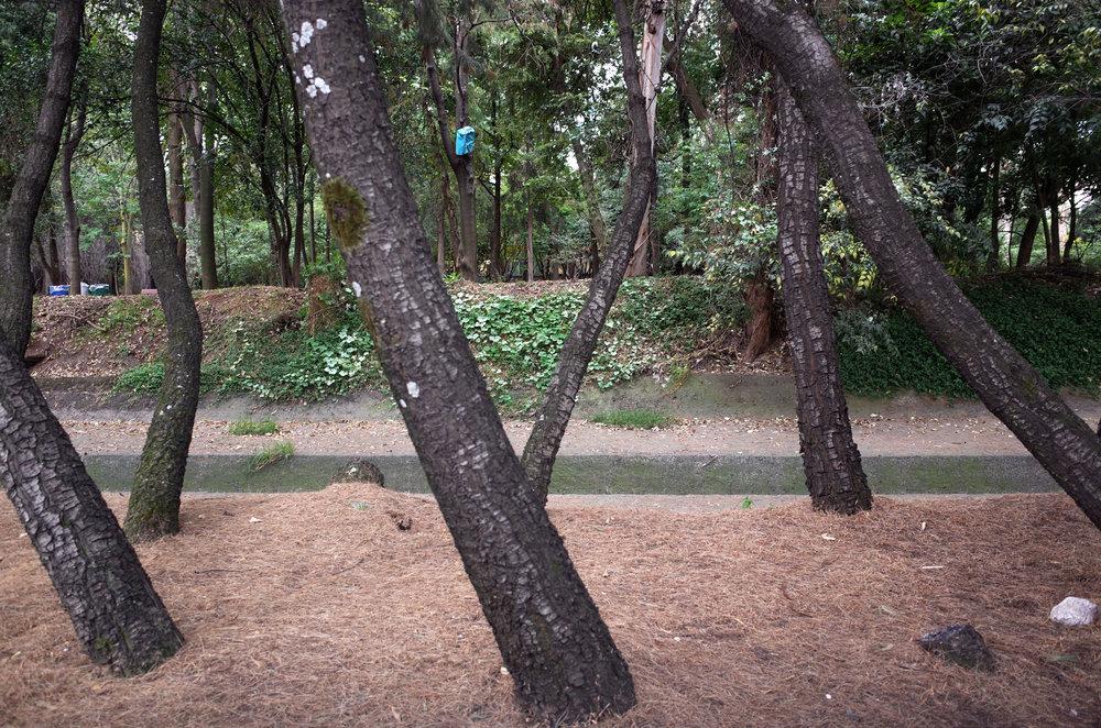 parklife.jpg