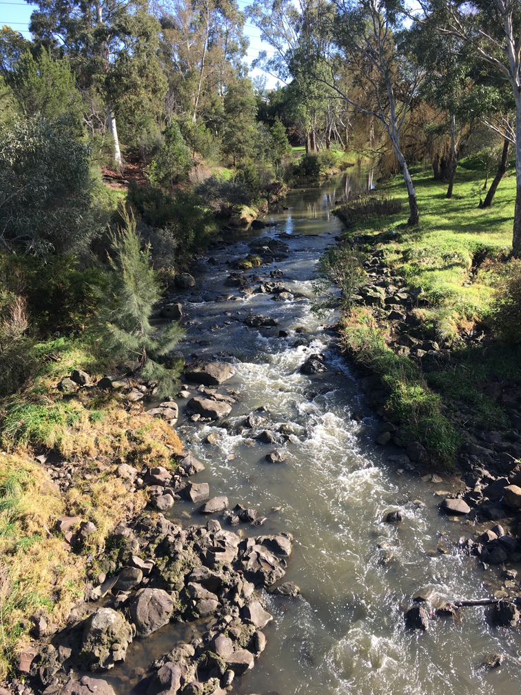 Merri Creek in Coburg