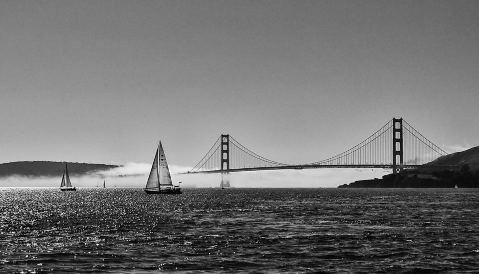 Golden-Gate-Mist.jpg