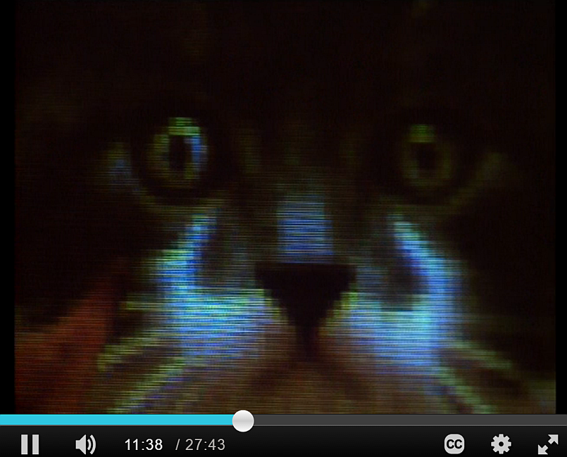 Screenshot (88)