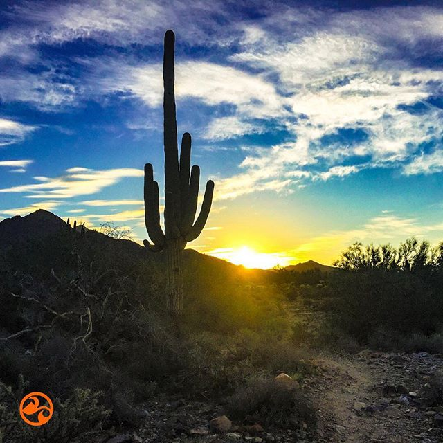 Dawn of a New Year!! What's on your horizon? Have a fantastic start to 2019!!😀🍊🏃‍♂️#liferocks #getout #runtherocks #livefit #liveorange #goexplore #soarnotsore #liferocksfitness #rockonathleticbalm #veganfitness #trailrunning #running #runingbliss #livingjuicy #happynewyear #2019 #goals
