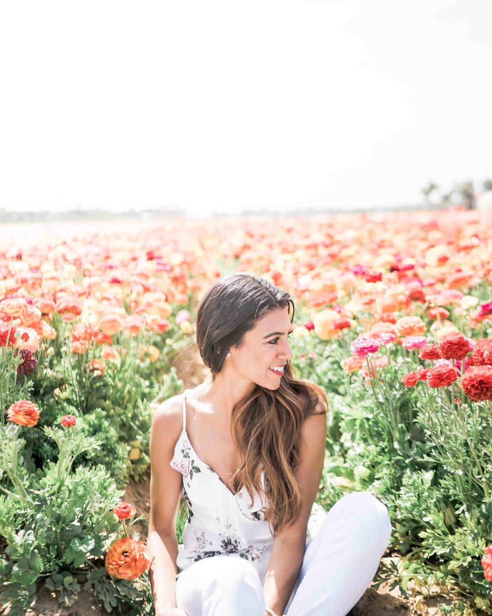 Carlsbad Flower Field Photos