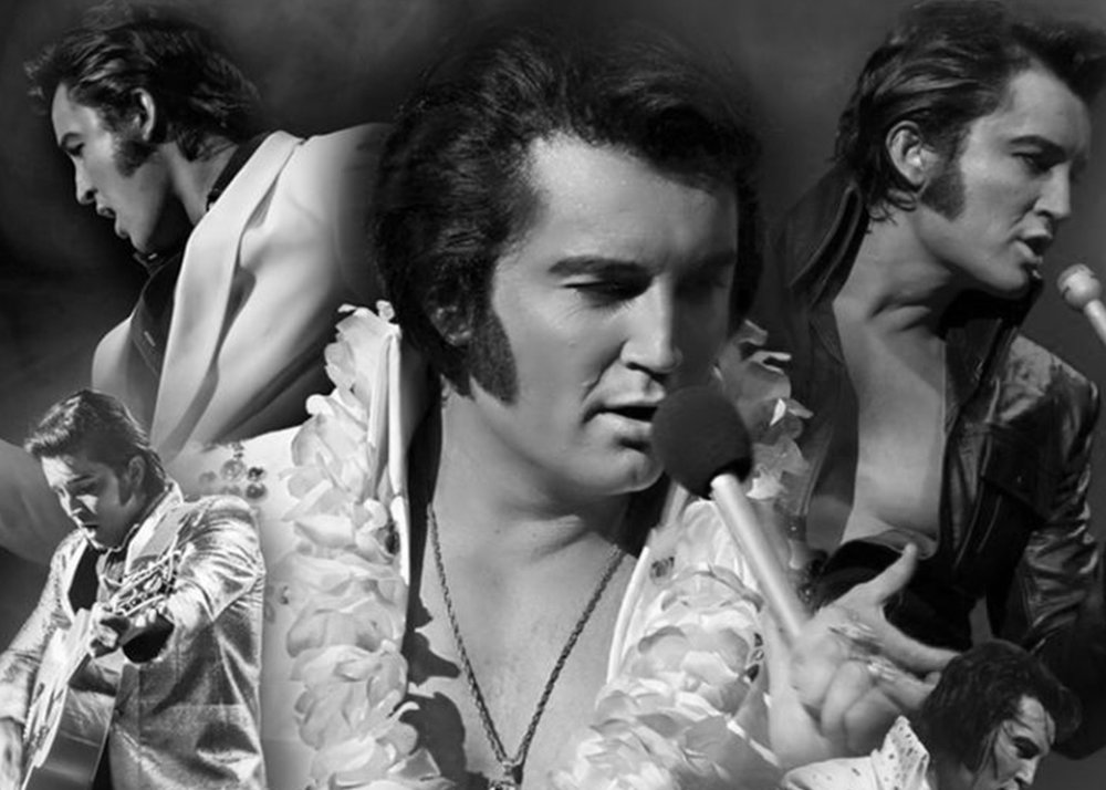 The King Is Back - We helped an Aussie promoter dive into digital for the first time to bring an Elvis tribute tour to life.