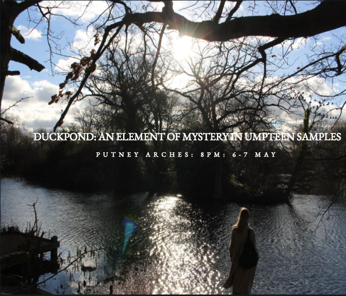 duckpond1.png