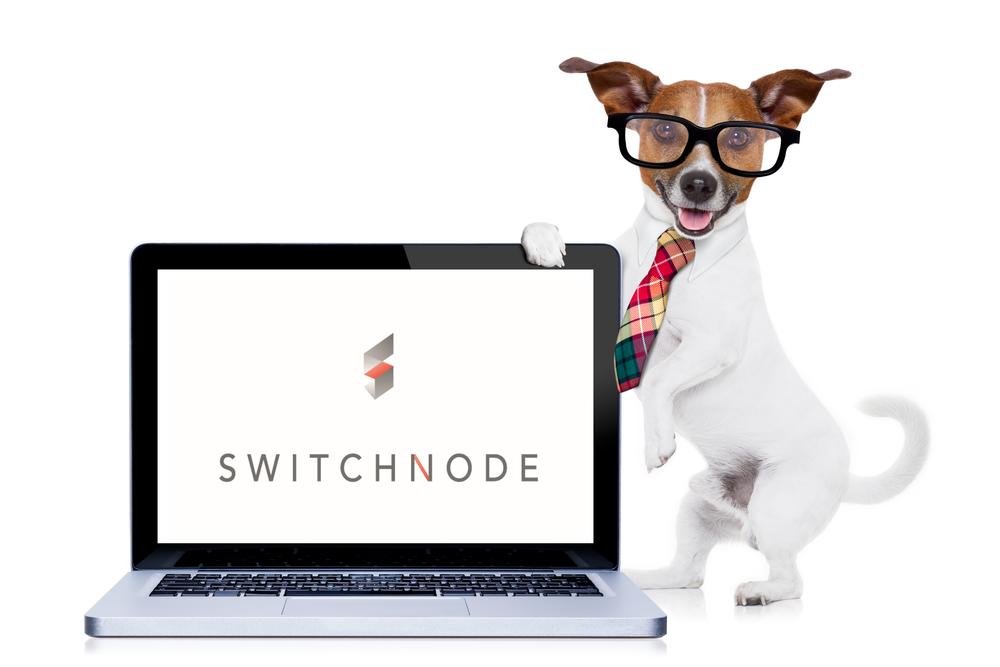 SN_doggo computer ad.png