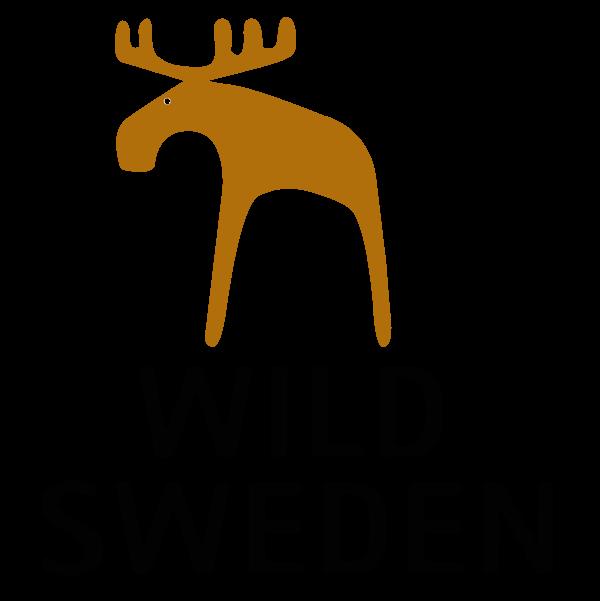 from america till sverige an english swedish summer adventure swedish edition