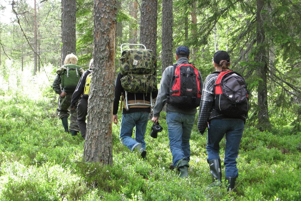 Walking to the photo cabin. Photo: Håkan Vargas