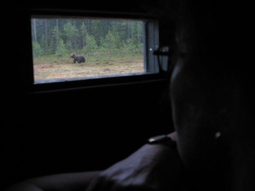 From inside the photo cabin. Photo: Håkan Vargas