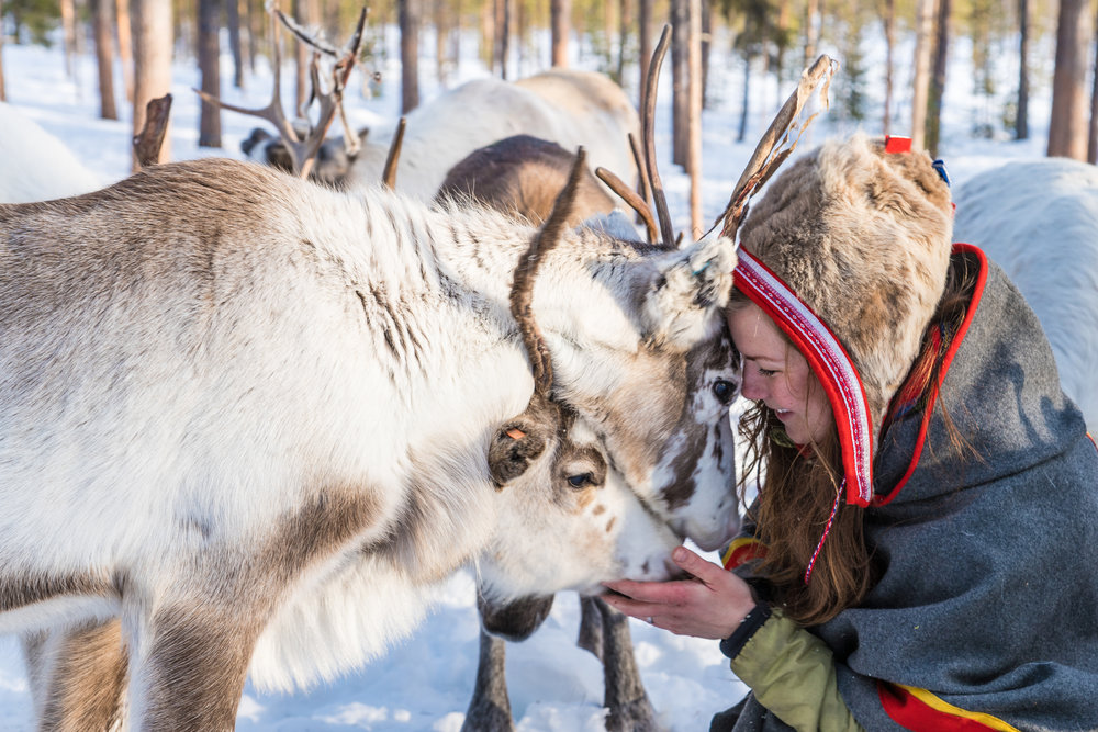 Anna and her reindeer