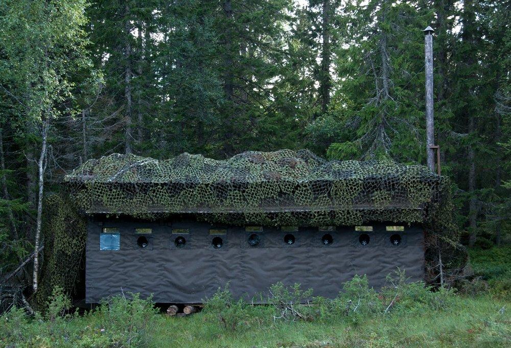 Photo hide for Brown bear watching. Photo: Håkan Vargas