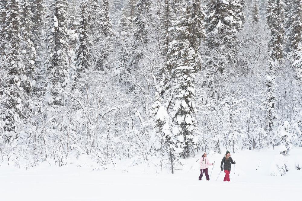 Try Nordic skiing or snowshoeing. Photo: Anna Öhlund/imagebank.sweden.se