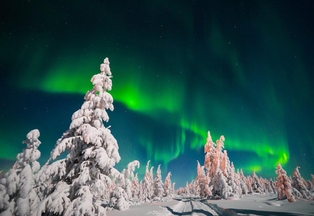 Northern lights over Lapland.