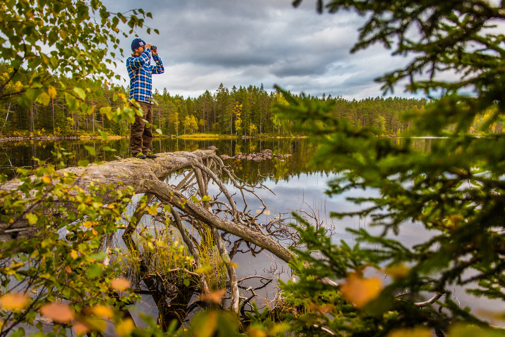Marcus Eldh, founder & owner of WildSweden. Photo: Marcus Westberg