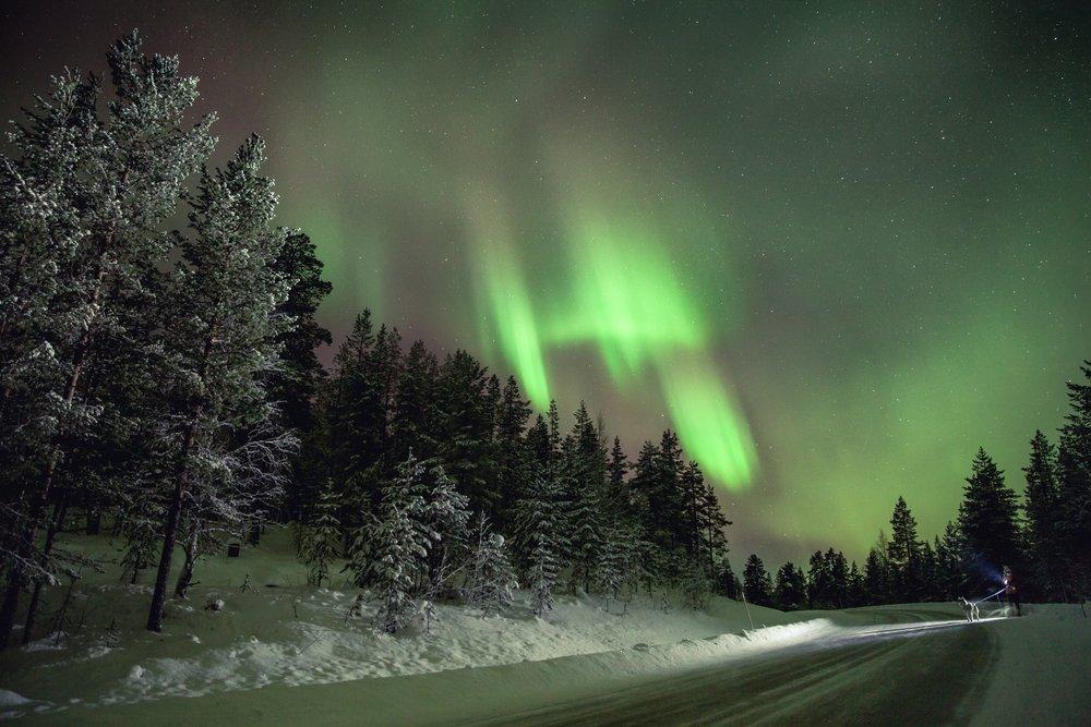 Walking the dog. Northern Lights photography by Jaanus Jagomagi