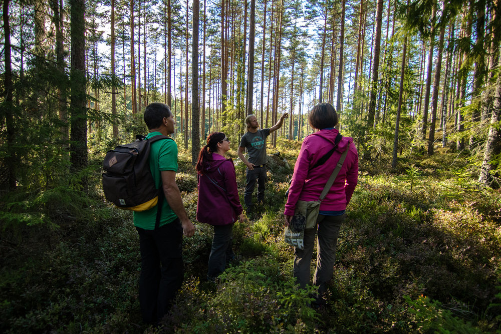 Hiking during a nature holiday in Sweden. Photo: Simon Green