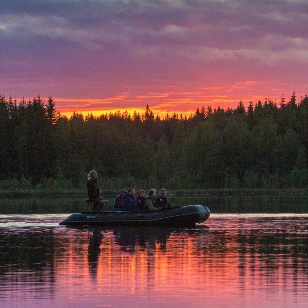 guided_wildlife_adventures_sweden.jpg