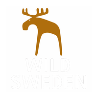 WildSweden - wildlife adventures in Sweden