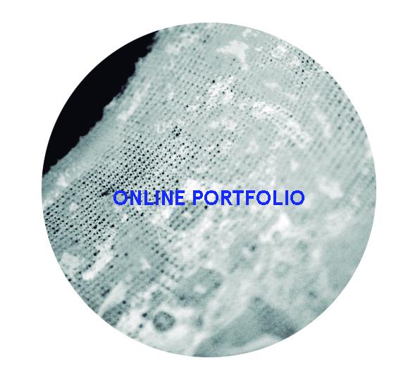 onlineportfolioicon.jpg