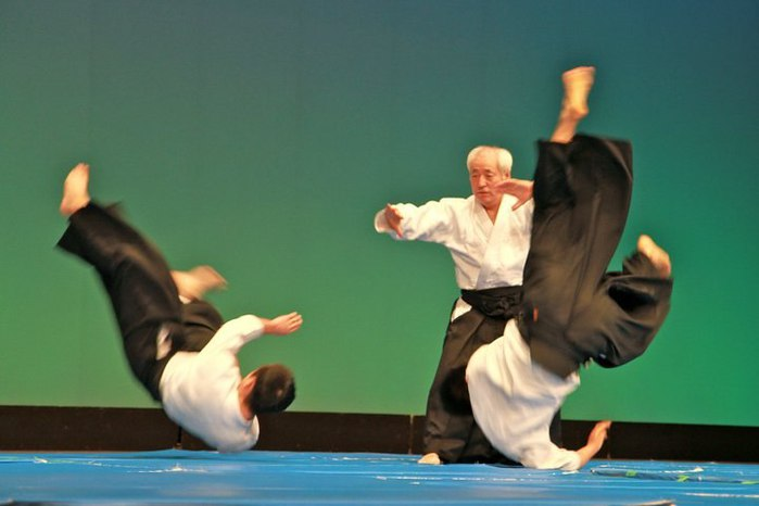 Sugawara-aikido-demo.jpg