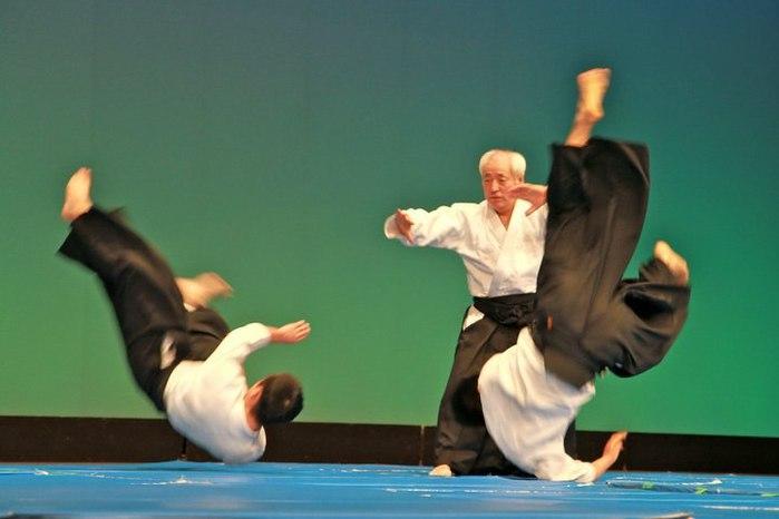 Sugawara-aikido-demo.jpg