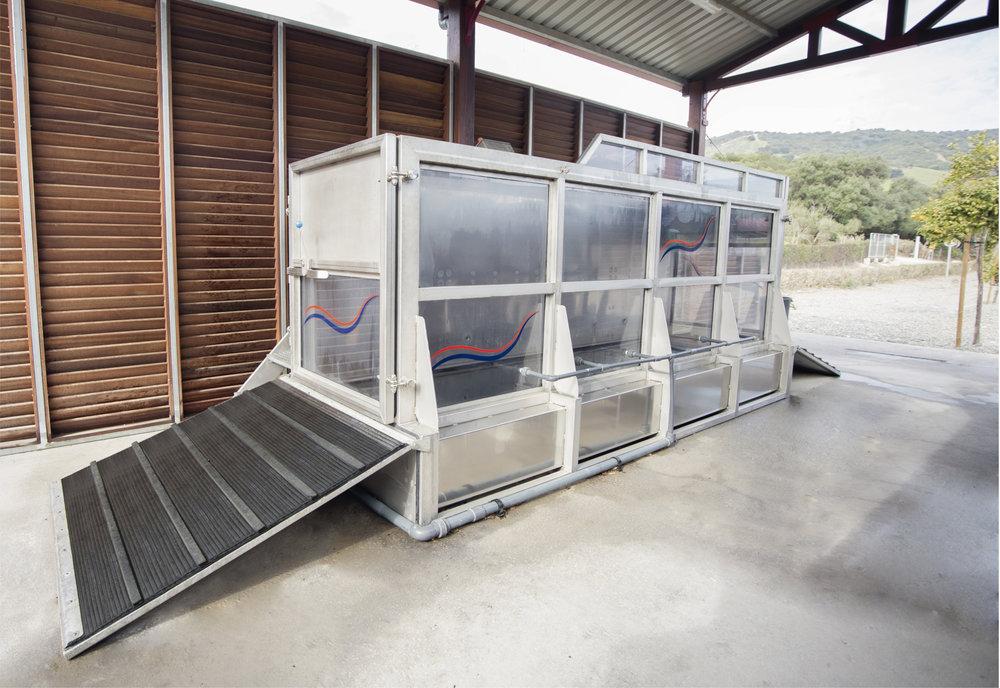 Aquatrainer Dos Lunas.jpg